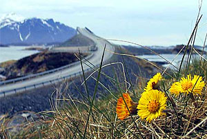 Spring at the Atlantic Road